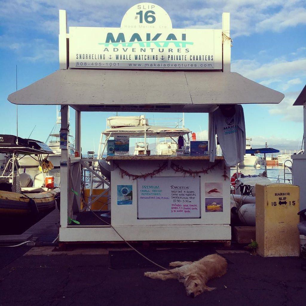Jet Set Lisette - Makai Adventures