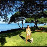 Dog Sitting on Maui