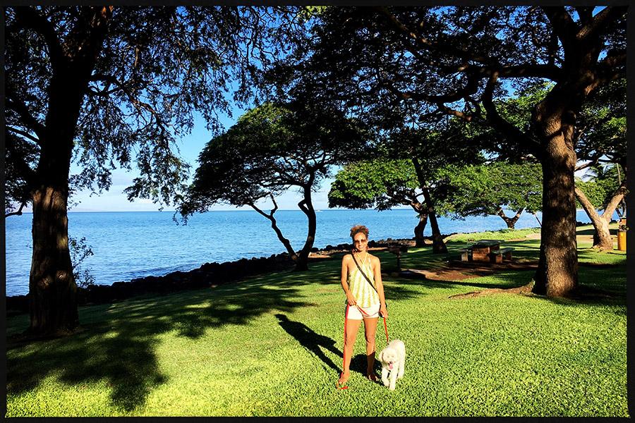Jet Set Lisette - Dog Sitting on Maui