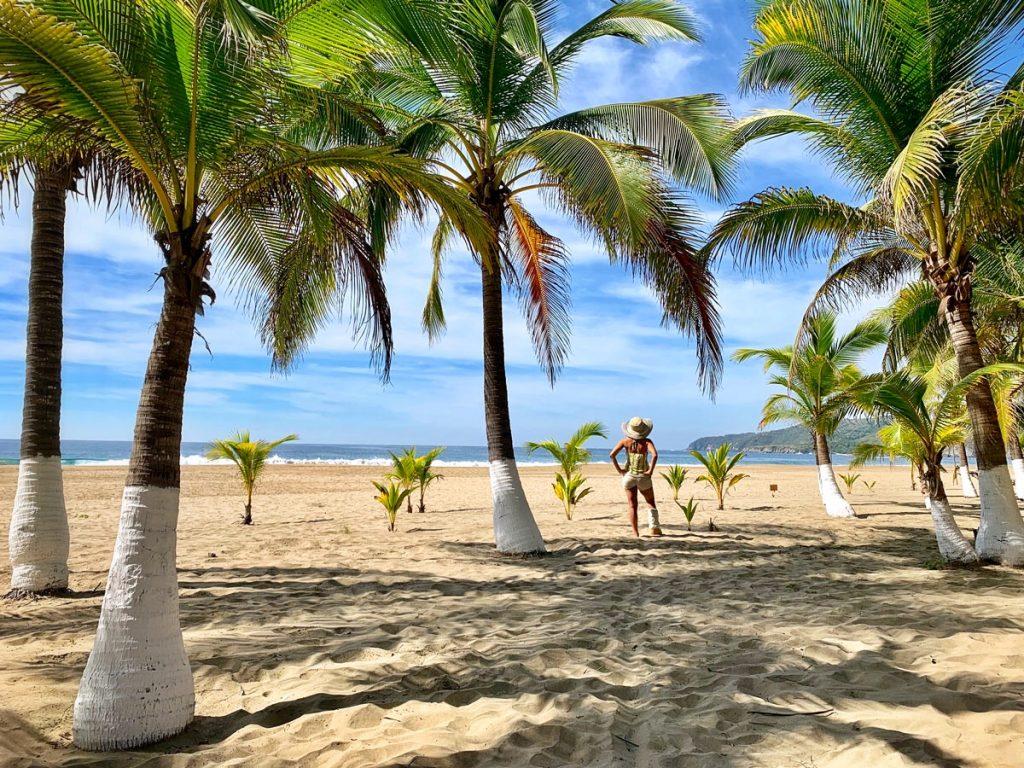 Jet Set Lisette - Playa Larga, Zihuatanejo